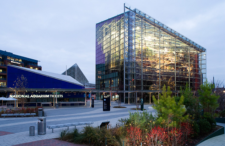 National Aquarium at 501 East Pratt Street includes Animal Planet Australia, which is visible through the glass