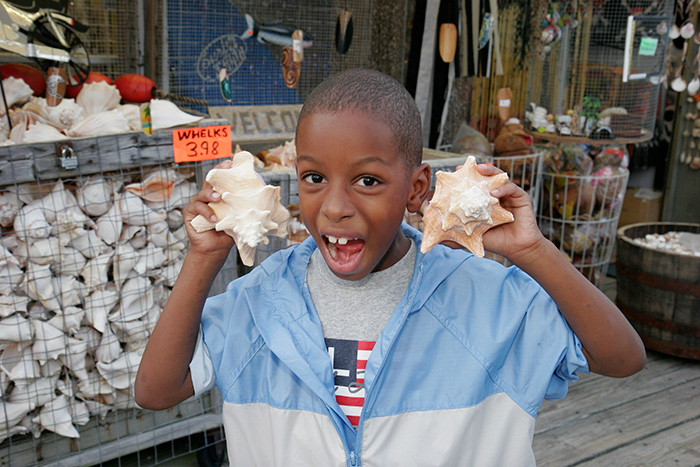 Buying conch shells in Virginia Beach shops