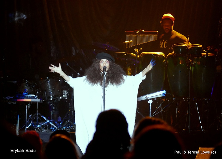 Erykah Badu performing at Hoodies Award Show