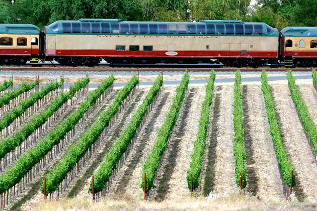 Napa Valley Wine Train vineyards