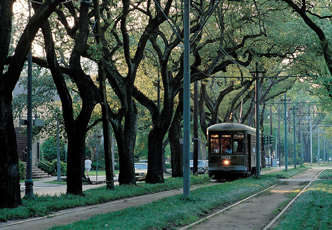 St. Charles Streetcar passing through the Garden District