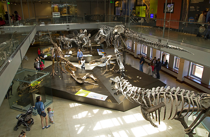 Natural History Museum Dinosaur Hall, Los Angeles Family Attractions
