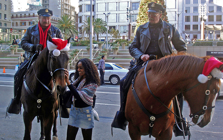 Petting a gentle horse in Union Square, San Francisco General Attractions