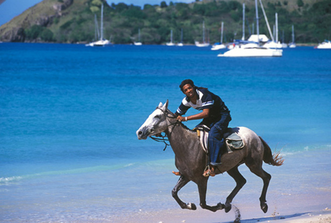 Ride horseback on the beach, St. Lucia Attractions