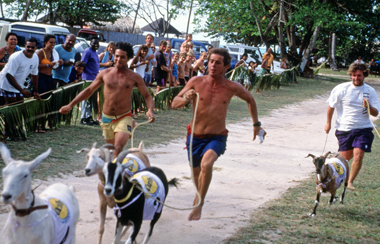 Racing goats on Trinidad