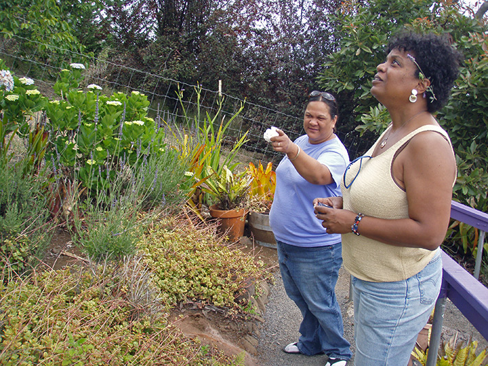 Jodie shows Hawaii native plants to Surlene Grant at the Lavender Farm, Maui