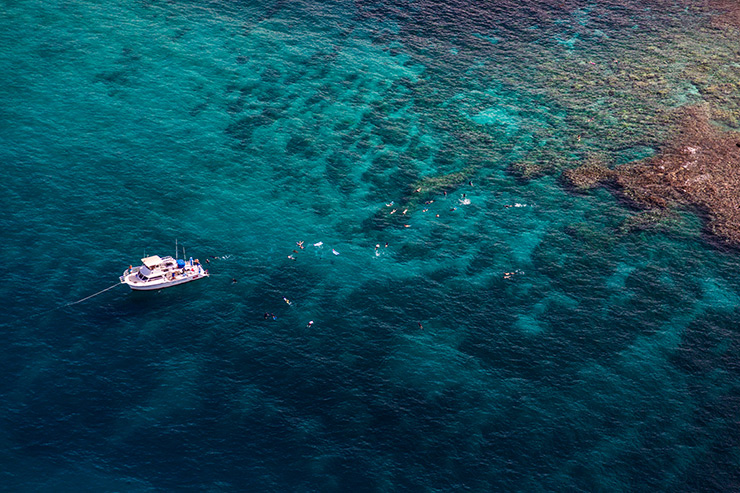 Snorkeling, Exploring Maui's Underwater World
