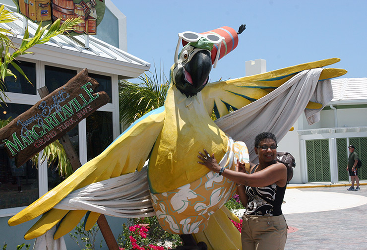 Parrot in front of Margaritaville, Turks & Caicos