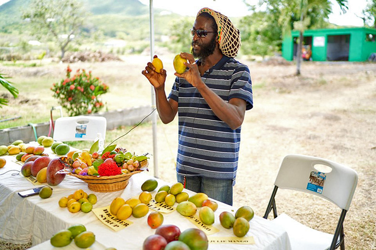 A Nevis vendor selling the island specialty, Mangos