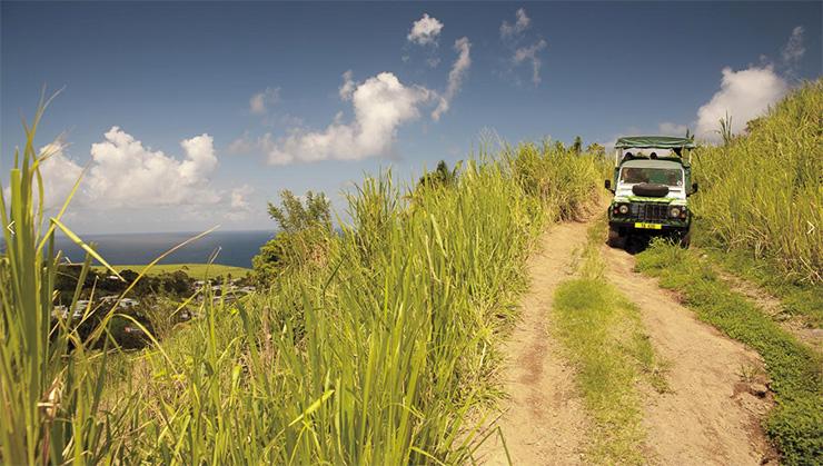 Safari Jeep on a St. Kitts hillside