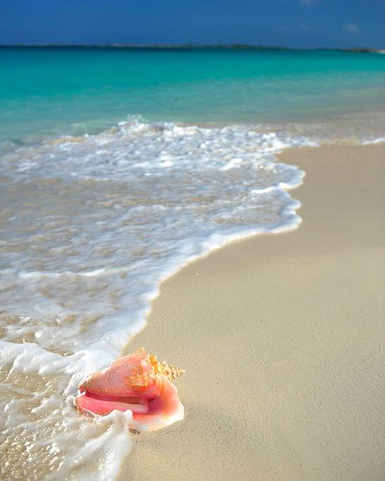 Nassau Beaches
