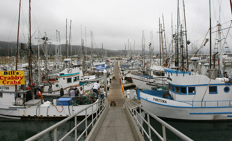 Half Moon Bay Harbor, San Mateo County