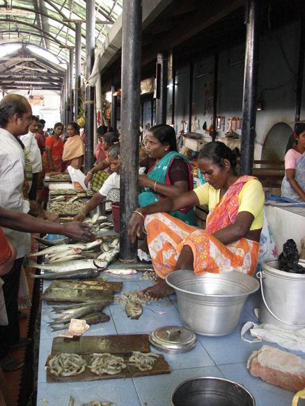 Grand Bazaar fish market